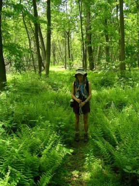 Marit Schultz, standing in the ferns along the Appalachian Trail.